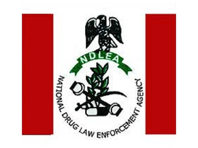 NDLEA News today on Recruitment